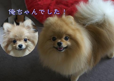 blog20150908-4.jpg