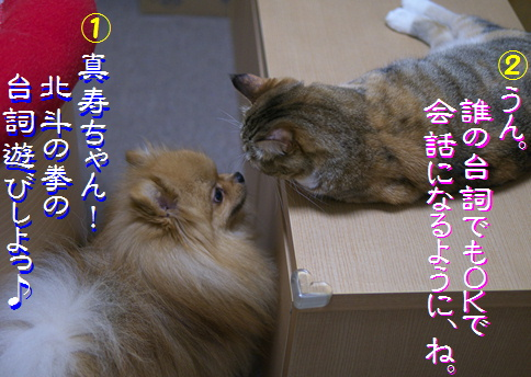 blog20150911-1.jpg