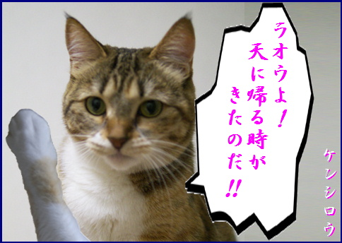 blog20150911-2.jpg