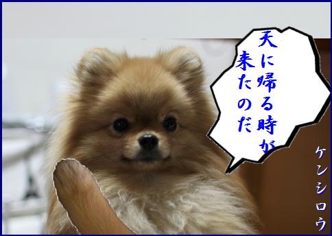 blog20150911-3.jpg