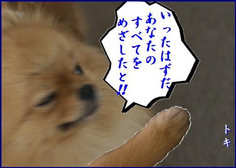 blog20150911-4.jpg