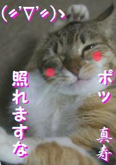 blog20150911-r.jpg