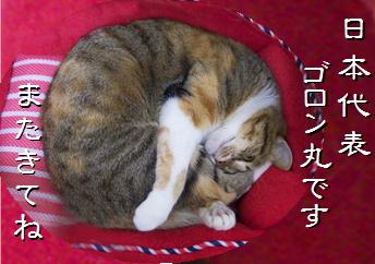 blog201510.jpg