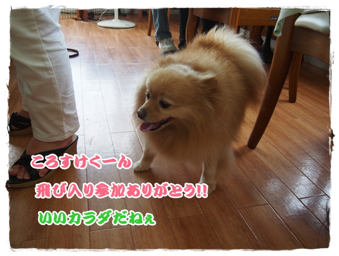 P9051561.jpg