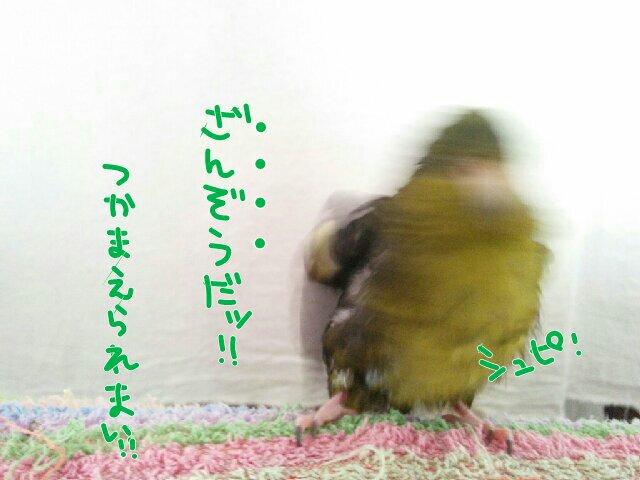 20151012122740c6b.jpg