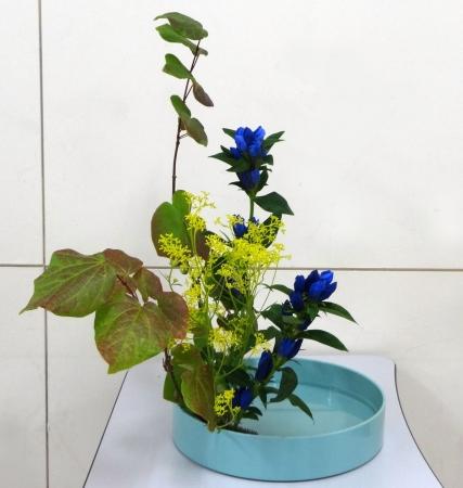 DSC00874-盛り花150907