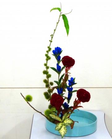 DSC00891-盛り花150914