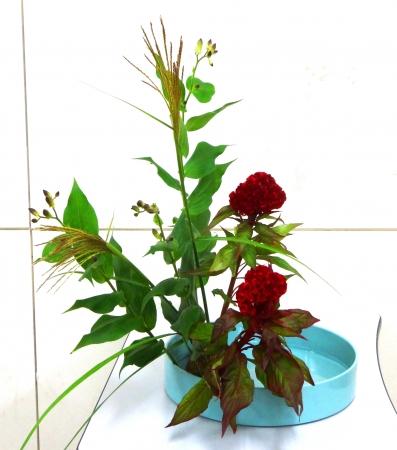 DSC00905-盛り花150928