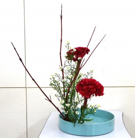 DSC00918-盛り花