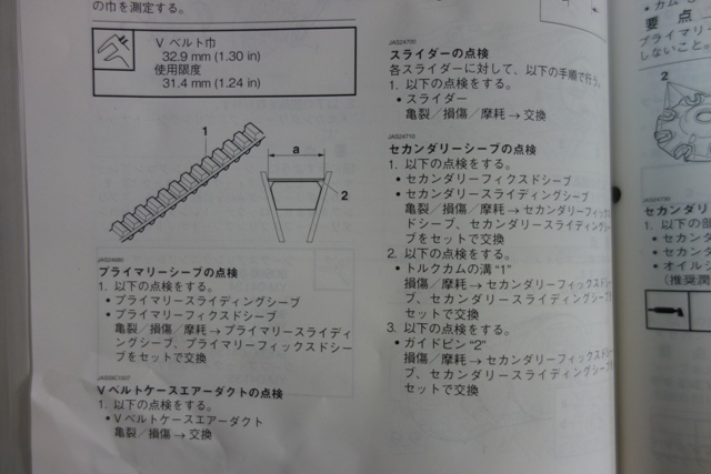 DSC01305XX.jpg