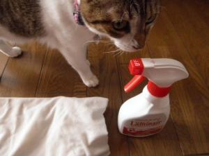 フローリング用抗菌コート洗剤2