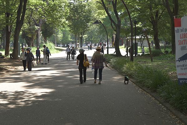 上野公園お散歩