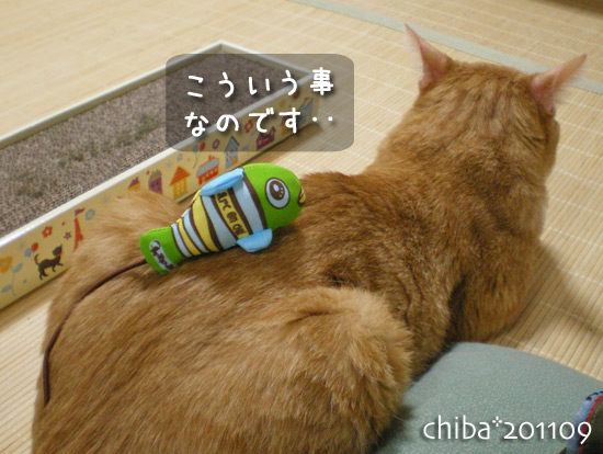 chiba15-08-29.jpg