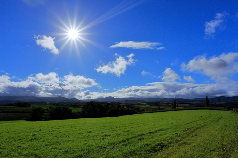 太陽が照らす丘
