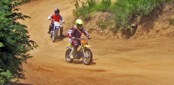 cub-race (320)