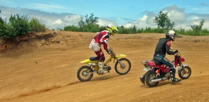 cub-race (323)