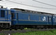 カニ24-508