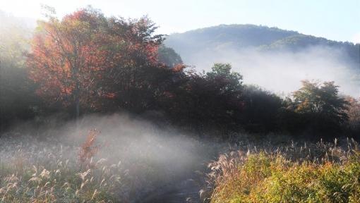 4759霧が谷15101415