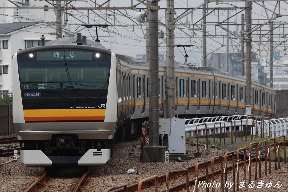 IMG_8262a.jpg