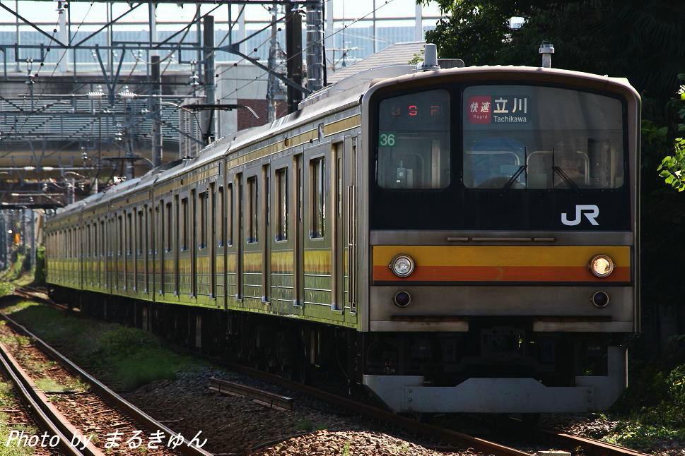 IMG_8672l1.jpg