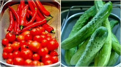 朝採れ胡瓜&tomato