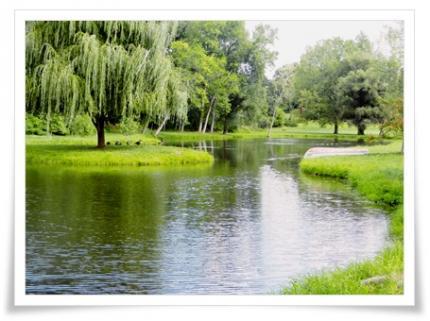 個人のお宅の池