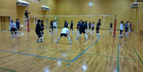 湊スポーツセンター・ゴールド