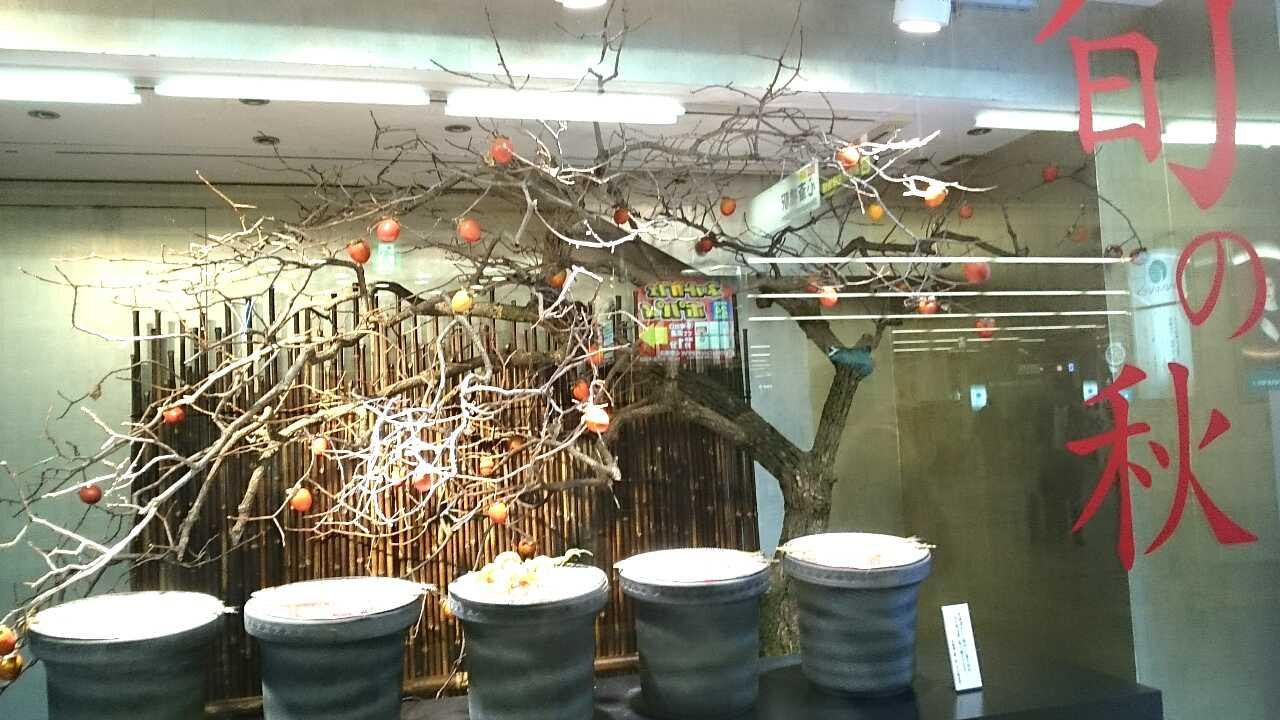 旬の秋/大丸のウインドウ