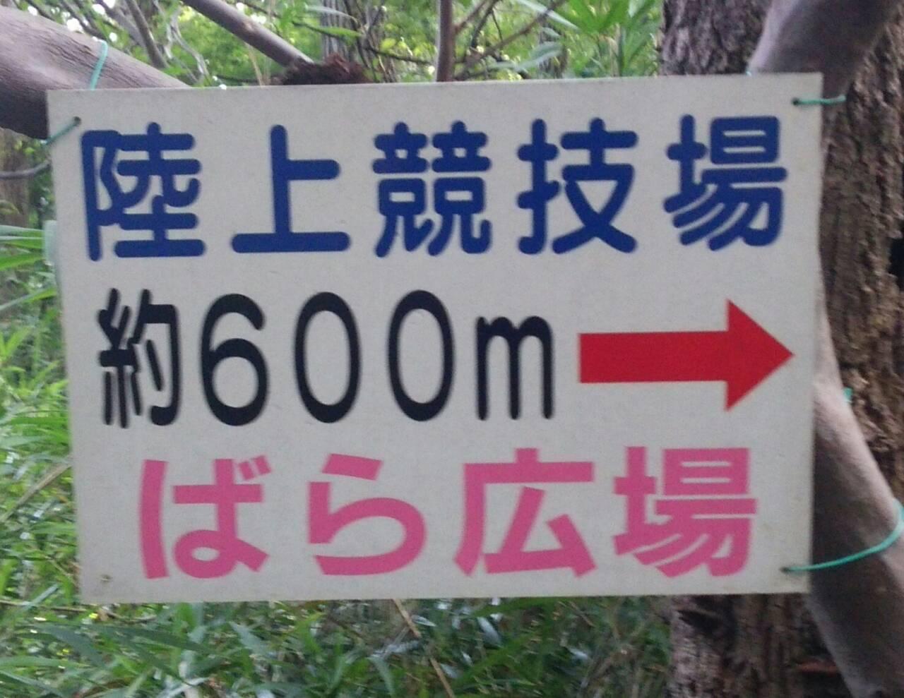 町田ゼルビア11451