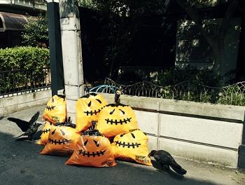 gomihiroi201510201.png