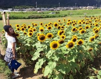himawari91920152.jpg