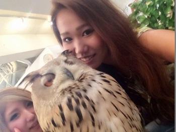 owl82162.jpg