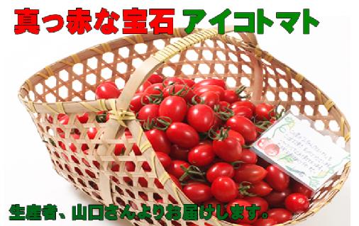 真っ赤な宝石アイコトマト