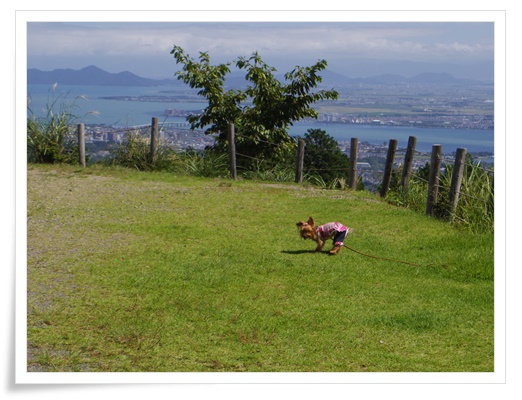 琵琶湖1日目IMGP3444-20150911