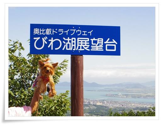 琵琶湖1日目IMGP3446-20150911