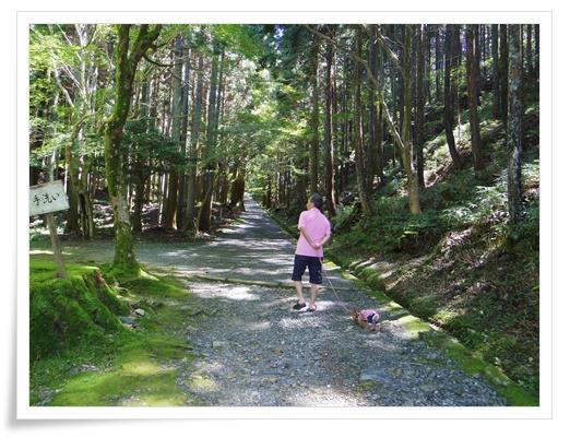琵琶湖1日目IMGP3451-20150911