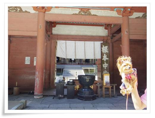 琵琶湖1日目IMGP3454-20150911