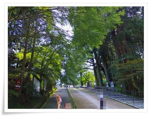 琵琶湖1日目IMGP3460-20150911