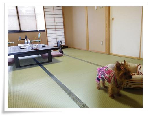 琵琶湖1日目IMGP3474-20150911