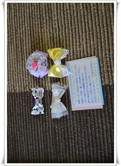 りよんちゃんのおりぼんDSC_0176-20150924