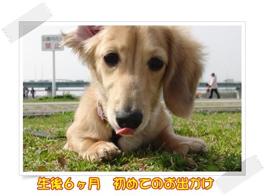 CIMG01681.jpg