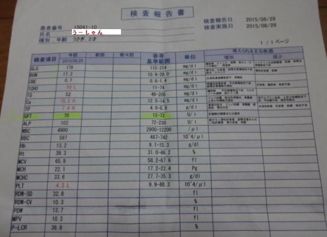 血液検査H27.8