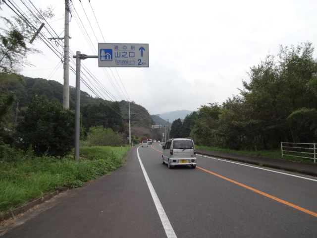 DSC06245.jpg