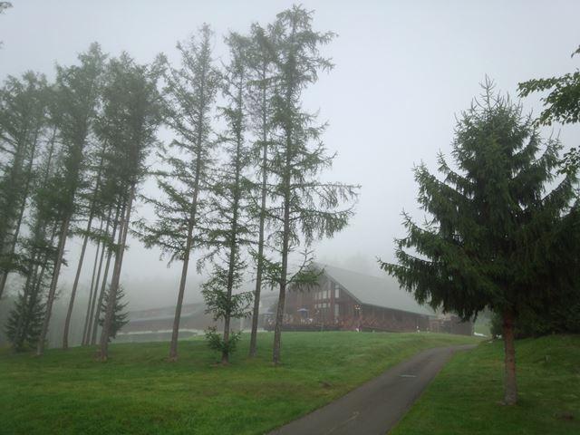 雲海 朝靄