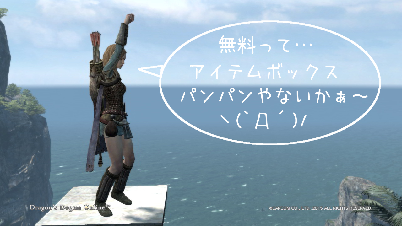 Dragons Dogma Online_17-1