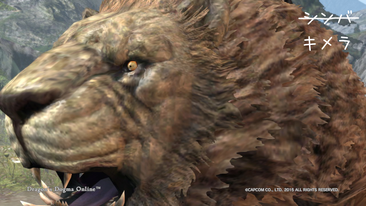 Dragons Dogma Online_16-3