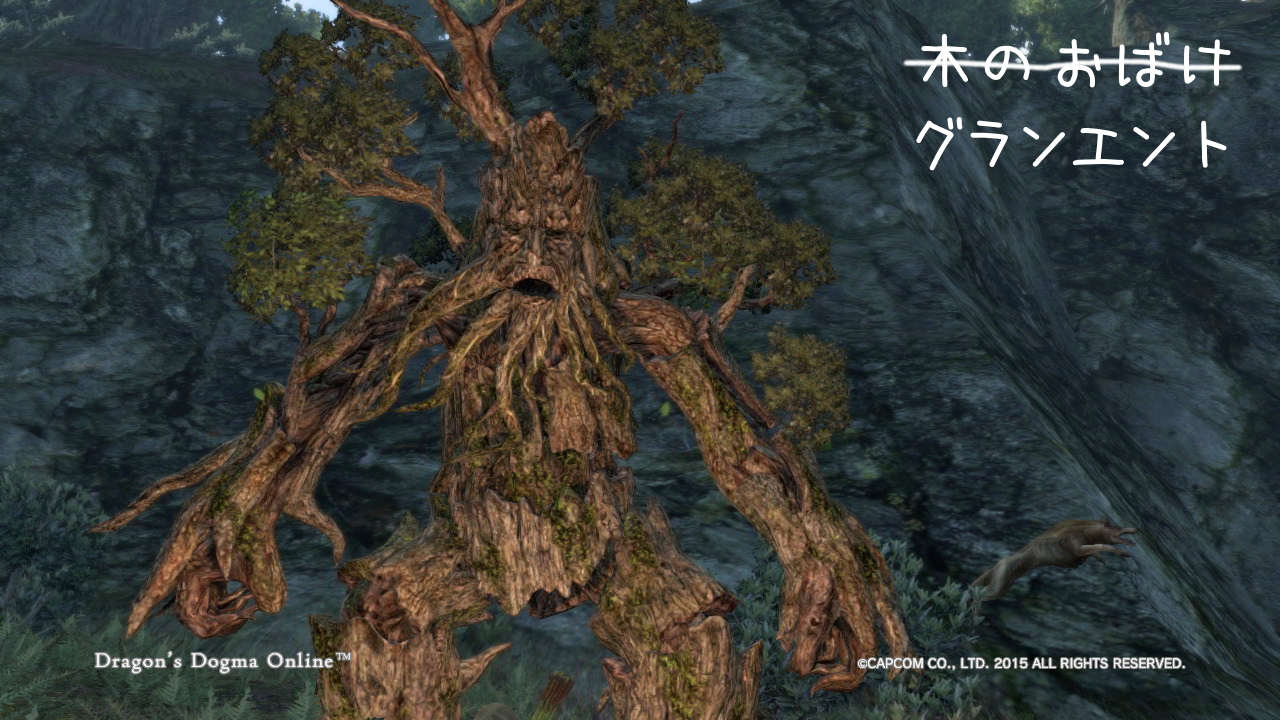 Dragons Dogma Online_9-2