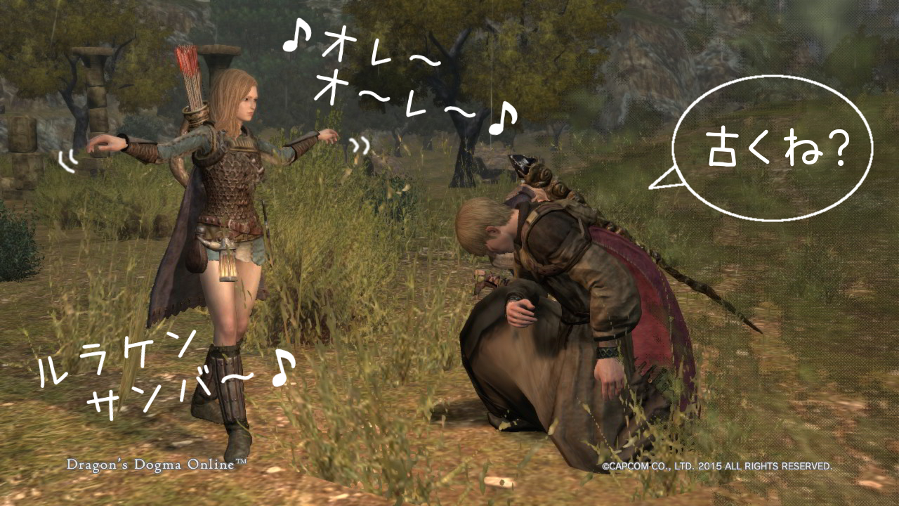 Dragons Dogma Online_14-5