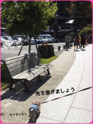 201510131047343dc.jpg