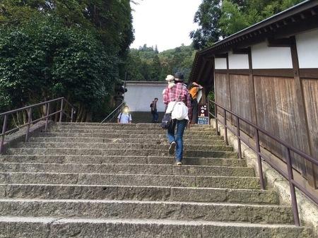 階段おかー